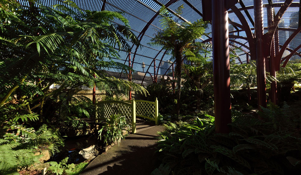 The Fern House, Royal Botanic Gardens Sydney